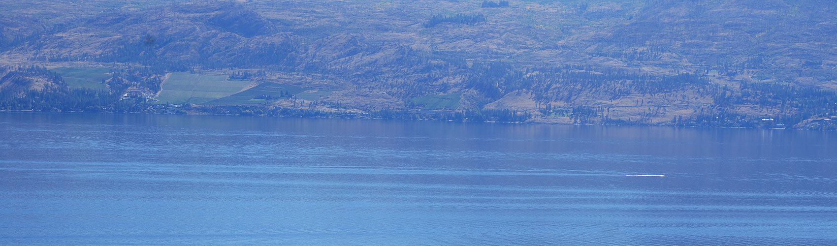 September 9, 2018, sighting by Andrew Stark of Kelowna that appears to offer pretty conculsive evidence that the great Lake Monster of Lake Okanagan does exist!